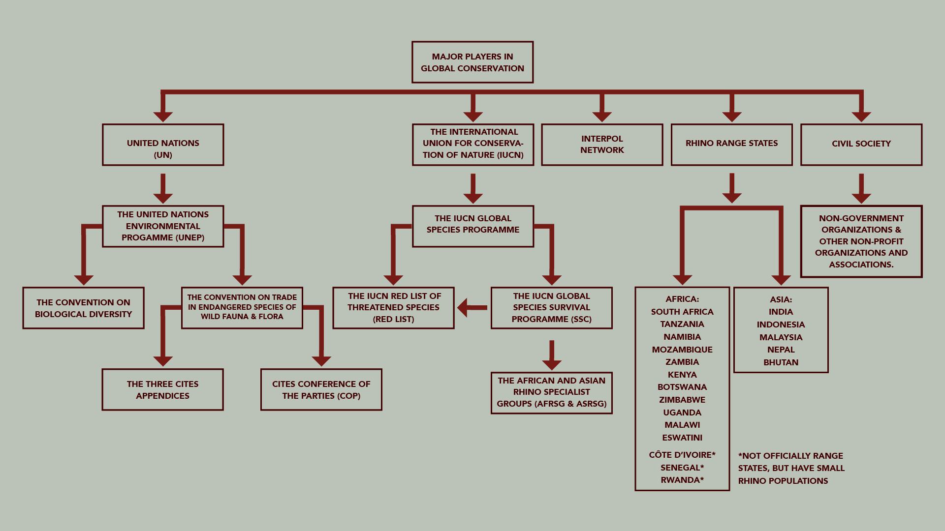 Global Conservation Organogram