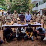 Tiger, leopard skin seized, 8 arrested; officials suspect items part of bigger smuggling racket – India